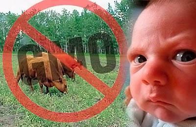 Фото. ГМО и ребенок
