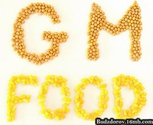 Фото. ГМО, еда, вред