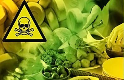 Фопо. Появление ГМО пищ