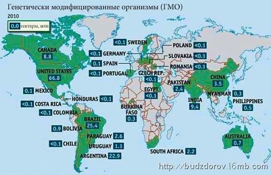 Фото. Карта территорий ГМО