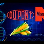 Фото. Правда о ГМО