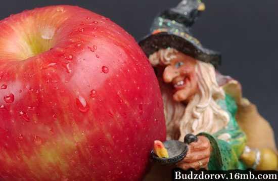 Фото. ГМО яблоко
