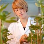 Фото. Бесплодие и ГМО