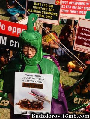 Фото. Мы против ГМО