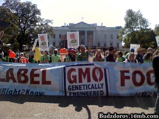 Протесты в США против ГМО