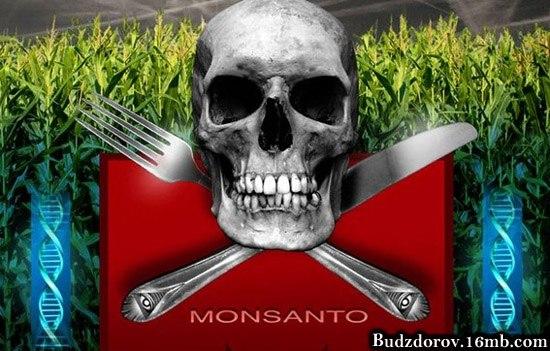 Monsanto - крупнейший производитель ГМО