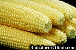 кукуруза - SynthiToxStax