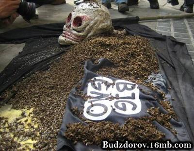 Протесты в Польше против ГМО