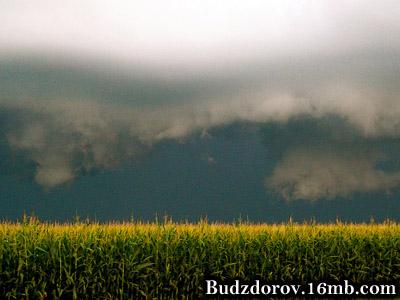 Будущее ГМО в России под грозой