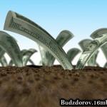 ГМО растения приносят доход