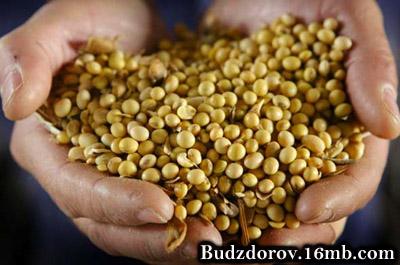 Соя от Монсанто (ГМО)