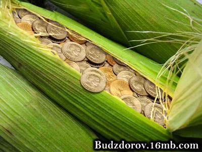 Чисто деловой подход до ГМО