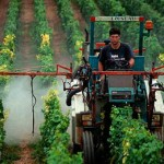 Фото. Пестициды во Вьетнаме