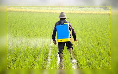 Фото. Распыление Roundup - помощника ГМО