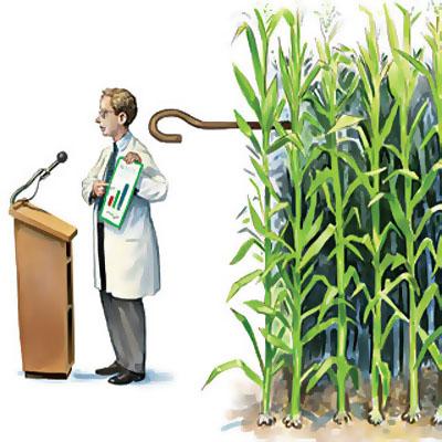 Фото. Ученые на крючке у ГМО-компаний