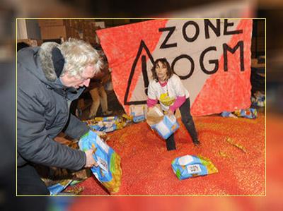 Фото. Анти-ГМО активисты открывают пакеты с кукурузой MON810