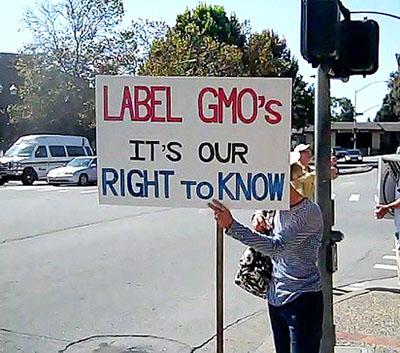Фото. Один из анти-ГМО активистов