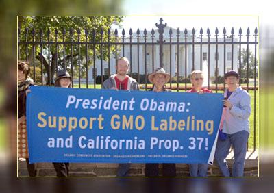 Фото. Американцы просят Обаму ввести маркировку для ГМО