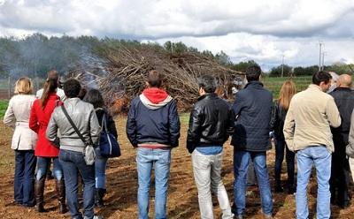 Фото. Анти-ГМО активисты на сжигании деревьев