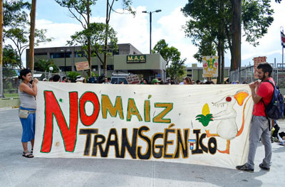 Фото. Митингующие против ГМО в Коста-Рика