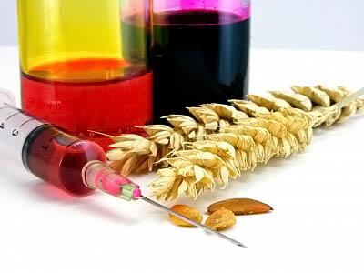 Фото. Генетически модифицированная еда