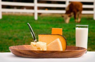 Фото. Молочные продукты