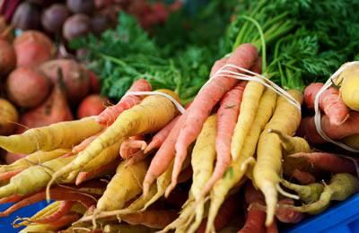 Фото. Морковь от гриппа