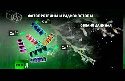 Фото. Перспективы биофизиков