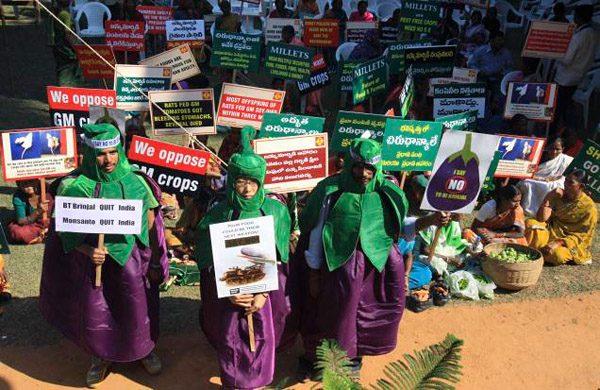 Фото. Филиппинцы против ГМО