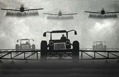 Фото. Самолеты над полем