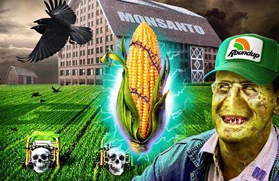 Фото. ГМО на Гавайях