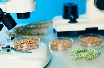 Фото. Производители ГМО продуктов