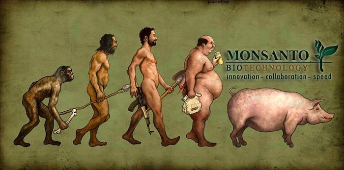 Фото. Эволюция по версии Монсанто