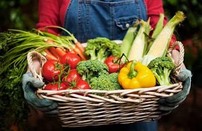 Фото. Корзина овощей и фруктов