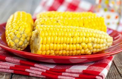Фото. В Африке вывели новые сорта кукурузы