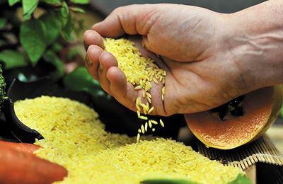 Фото. Сегодняшние реалии золотого риса