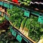 Широкий ассортимент зелени в супермаркете