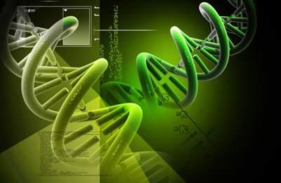 Фото. Закрученная спираль ДНК