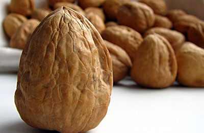 Фото. Гора вкусных орехов