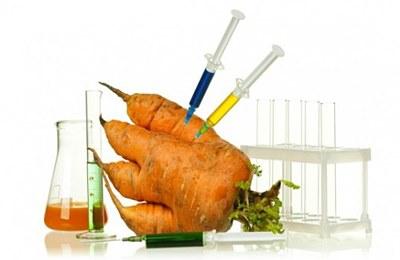 Фото. Модифицированная морковь