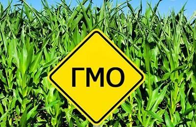 Фото. Знак о запрете ГМО