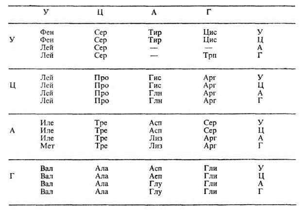 Фото. Генетический код составленный в виде таблицы
