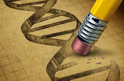 Фото. Удаление гена и вставка нового