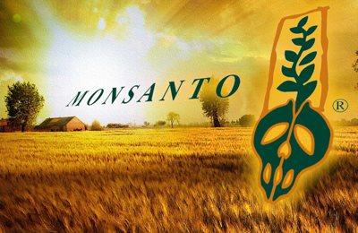 Фото. Противники ГМО и Монсанто