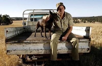 Фото. Зерновой фермер сидит со своей собакой