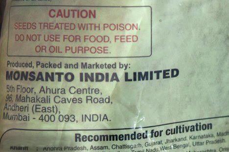 Фото. Чем так опасны продукты компании Монсанто