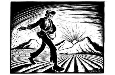 Фото. Мужчина сеет зерно на поле