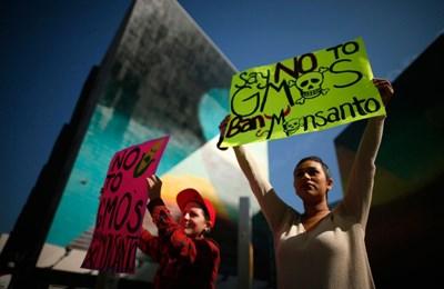 Фото. Население Америки выступает против трансгенов