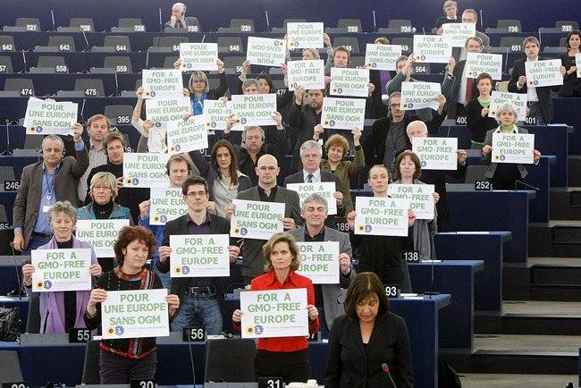 Фото. Парламентарии ЕС против ГМО