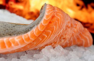 Фото. Пахнущий лосось на льду
